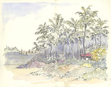 sketch_pupu_hut_fleming_beach