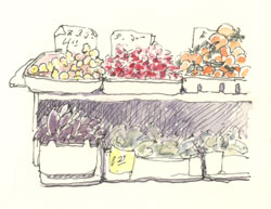 sketch_chinatown_produce