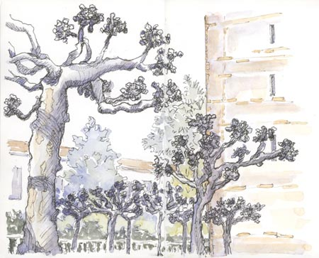 sketch_berkeley_campanile