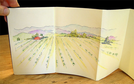 sketch_vineyard