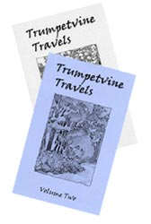 trumpetvine_travels_zine_covers